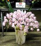 nakadai20141102